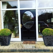 Beautiful front door featuring some very healthy bux and our ripple planters #black #classic #bux #frontdoor #exteriordesign #landscaping #home #lemonfield #gardening #growing #house #homedecor #ireland #october #entrancedecor #entrance #containergardening #containerplants #pots #pottery