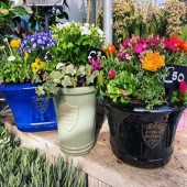 We can't believe it's Easter already 😅  Our botanical garden range is one of our most popular styles. Seen here planted up by @kiernans.gardencentre #lemonfield #pottery #gardencentre #supportlocal #ireland #pots #gardening #ceramics #ceramicplanter #landscapes #design #exteriordesign #gardendesign